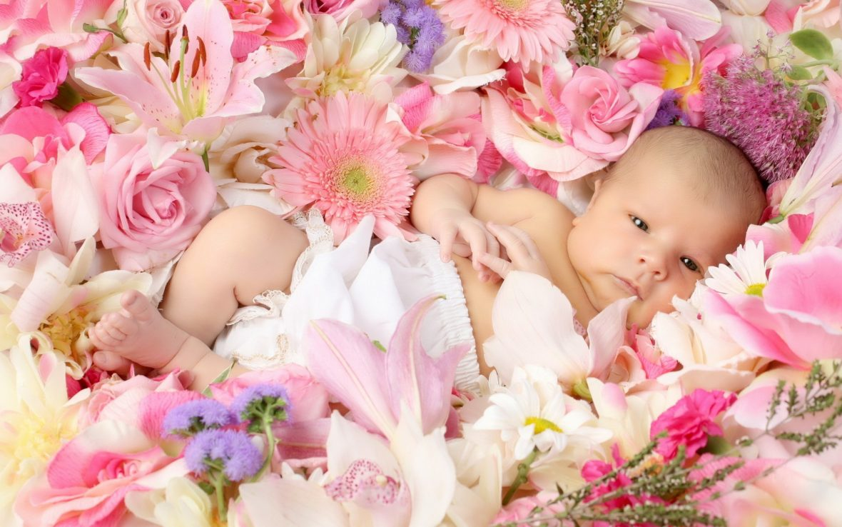 child-children-babe-babe-flower-roses-lilies-gerbera-happiness-schate-positive