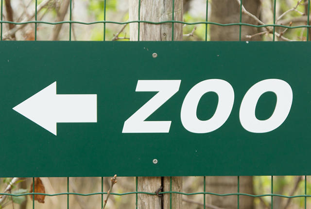 Green zoo' sign