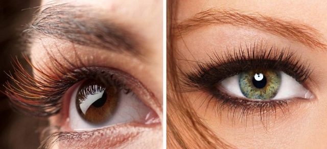 lashes-brown