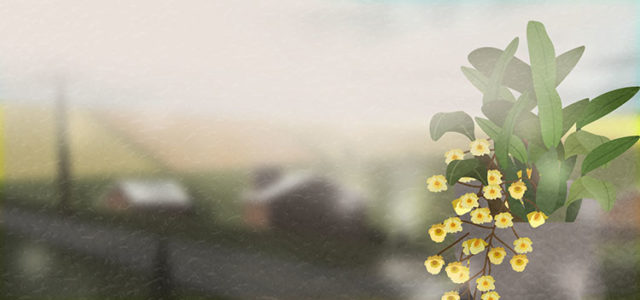 fresh flowers banner background_722843